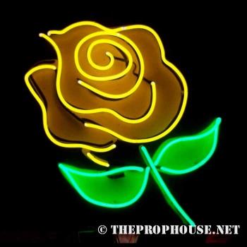 Neon-Rental-Flower